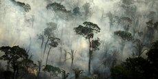 Sur la seule journée du 30 juillet, les satellites ont détecté 1.007 incendies en Amazonie, a indiqué l'INPE, le pire jour pour un mois de juillet depuis 2005, a souligné l'ONG de défense de l'environnement Greenpeace.