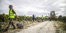 La distribution des salariés dans la vigne n'est pas vraiment un casse-tête, même avec le coronavirus/photo d'archive