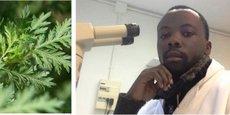 Responsable des essais cliniques et recherches médicales et scientifiques à La Maison de l'Artemisia à Paris, Dr Jérôme Munyangi est l'auteur du protocole qu'il a baptisé « Covid-Artemisia » qui a permis d'élaborer le Covid-Organics révélé par le président Rajoelina.