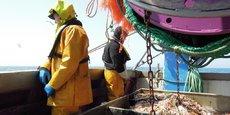 En Pays de la Loire, 370 navires débarquent en moyenne 30.000 tonnes de poissons à haute valeur ajoutée (bar, sole, langoustine, sardines...) chaque année an, pour un chiffre d'affaires annuel de 112 millions d'euros.