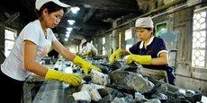Si la Chine est première dans les lanthanides ou le tungstène, ce n'est pas pour une raison géopolitique étrangement misanthropique, mais encore et toujours pour une raison géologique, elle en a de riches gisements et elle les exploite. (Photo d'illustration: le tri du minerai dans une mine de tungstène à Zhongshan, région autonome de Zhuang, Guangxi, Chine, le 2 juin 2017)