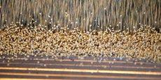 4,8 millions de tonnes de soja utilisées tous les ans pour nourrir les consommés en France.