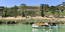 Tourisme viticole sur la Marne, à Mareuil-sur-Ay.