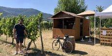 Un bar éphémère dans le vignoble à Ottrott, dans le Bas-Rhin.