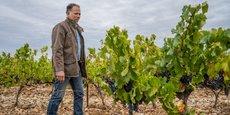 La jeune pousse lyonnaise Oé, créée en 2015, propose du vin biologique, végan et sans pesticides.