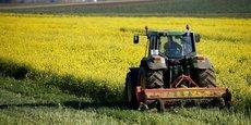 55% des agriculteurs français ont 50 ans ou plus, soit 24 points de plus que pour l'ensemble des personnes en emploi (31%), note l'Insee.