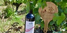 Bouteille allégée, abandon de la capsule et étiquette sans plastique : ce n'est que la partie visible du travail de fond réalisé par EthicDrinks pour compenser l'impact sur l'environnement de son activité de négociant en vin.