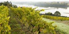 Les Etats-Unis, premier marché à l'export des vins de Loire, leur ont fait perdre entre 50 et 100 millions d'euros en 2020.