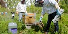 Dans la main gauche de cet apiculteur, une partie des capteurs de la société pour récupérer des données sur les ruches.