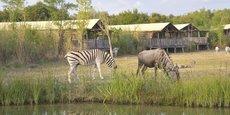 Le 5ème parc d'attractions français, qui possède un zoo réunissant plus de 700 animaux, mise sur un nouveau modèle d'hébergement en immersion en projet depuis plusieurs mois, mais qui pourrait arriver à point nommé pour soutenir sa réouverture.