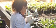 NFL Biosciences développe des médicaments botaniques de prescription, pour le traitement des addictions au tabac dans un premier temps, à l'alcool et au cannabis dans un second temps.