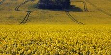 La réforme de la PAC est jugée insuffisante par les eurodéputés verts, comme par ceux du groupe GUE/NGL (gauche radicale) qui dénoncent une trahison de l'agriculture écologique et paysanne.