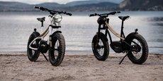 L'assemblage des vélos électriques de l'annécien HeritageBike se fait aujourd'hui dans les Pyrénées, mais demain, ce sera à Saint-Etienne, dans la Loire.