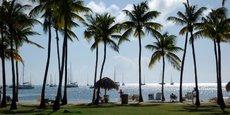 Le taux d'incidence est trois fois supérieur en Martinique qu'en France métropolitaine.