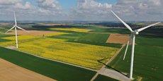 Un champ de colza à Saint-Hilaire-lez-Cambrai, dans le département du Nord.