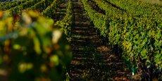 Le classement des vins de Saint-Emilion, dont la nouvelle édition est prévue en 2022, est sous les projecteurs de la justice.