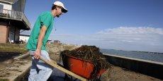 Fabriquer des objets à partir d'algues, ce sera peut-être bientôt possible. (Reuters)