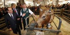 François Hollande est attendu dès samedi pour inaugurer le 52 Salon de l'Agriculture, porte de Versailles à Paris.