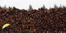 La qualité de la gestion des forêts résistera-t-elle aux exigences de rentabilité des investisseurs privés?