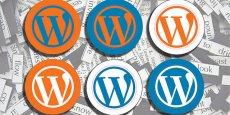 Selon Thomas Goirand, Wordpress est très complet et capable de rivaliser avec les sites web intégrant des formulaires et autres système de marketing automation des grandes marques. CC/Flickr/team stickergiant