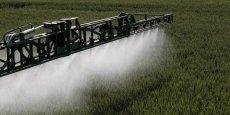 La Région Rhône-Alpes apporte son aide aux éleveurs.