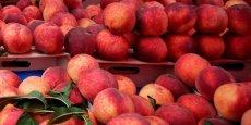 Les producteurs de pêches et de nectarines peuvent désormais distribuer gratuitement 10% de leurs fruits (contre 5% auparavant).