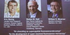 Eric Betzig travaille au Howard Hughes Medical Institute à Ashburn, aux États-Unis, tandis que William Moerner enseigne à l'Université de Stanford. Stefan Hell est directeur de l'Institut Max-Planck de chimie biophysique à Göttingen, en Allemagne.