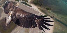 « Un million de personnes font du drone dans le monde », indique Eric Dupin, fondateur de Dronestagram
