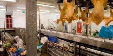 L'usine gardoise produit chaque semaine de la viande issue de l'abattage de 200 000 poulets.