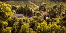 Le Chateau Martinolles dans l'Aude (11) appartient aux domaines Paul Mas.