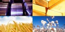 Pour Philippe Chalmin, coordinateur du rapport Cyclope, l'année 2014 a sonné le glas sur l'illusion que la quête des matières premières tirerait la croissance mondiale.