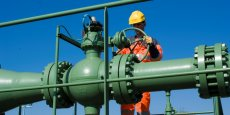 TIGF s'associe cette fois à Fonroche Energie, mais l'opérateur entend développer d'autres projets d'injection de Biométhane dans le réseau de transport de gaz naturel.