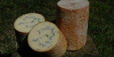ELS produit chaque année 350 tonnes de fromages dont la fourme de Montbrison.