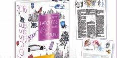 Le Petit Larousse recoonait le concept des objets connecté puisquil fait rentrer l'adjectif connecté,e.