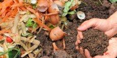 Le compostage est de plus en plus utilisé pour reduire le volume de déchets