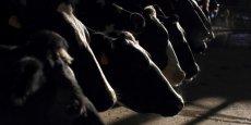 Malgré la promesse d'un prix minimum garanti jusqu'à la fin de l'année pour les producteurs de lait français, la grogne continue chez certains éleveurs.