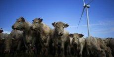Un régime alimentaire moins carné s'impose pour respecter une baisse suffisante de nos émissions de CO2.