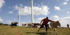 L'Afrique possède un potentiel énorme en énergies fossiles et renouvelables. (Photo: pasteur massaï avec son troupeau aux abords de la station de la Kenya Electricity Generating Company, à Ngong, au sud-ouest de Nairobi - Kénya, 2009.)