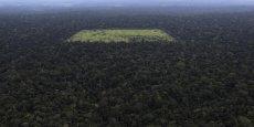 Pour lutter contre ce déboisement non contrôlé, des ONG mettent en place des technologies de surveillance de pointe. Satellites, drones et radars partent à la rescousse de la forêt vierge !