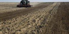 Le pôle agricole, où se retrouvent céréales, agrofourniture et légumes, représente 50 % de l'activité.