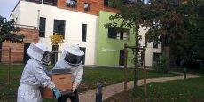 Biocenys pourra bientôt enrichir ses ruches d'outils connectés pour mieux suivre l'écosystème de ces petites bêtes.