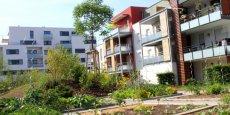 L'eco-quartier de Cronenbourg