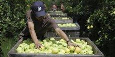 Les soutiens de l'Europe aux producteurs sont pour l'essentiel des aides au stockage, augmentées de 3.000 tonnes pour chaque Etat.