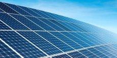 Le parc de Cestas, ce sont un millions de panneaux solaires sur 300 hectares
