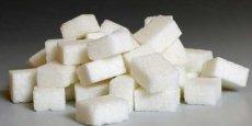 Le sucre est-il le responsable d'un grand nombre de maladies métaboliques ? Des voix s'élèvent pour répondre par l'affirmatif !
