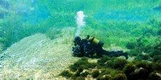Les compétences d'Aquascop sur les milieux aquatiques viennent compléter l'expertise de Biotope.