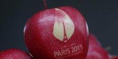 n. La conférence climatique permettait à François Hollande de « verdir » un discours jusqu'ici plutôt pâlot sur la question écologique : tergiversation sur la fermeture de Fessenheim, abandon de l'écotaxe, maintien de la construction de l'aéroport de NotreDame-des-Landes, etc.