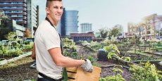 Plus de 600 000 mètres carrés de bureaux ont été transformés en plus de 50 hectares de cultures.