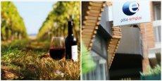 Languedoc-Roussillon Midi-Pyrénées sera le pluss grand vignoble du monde, mais une région qui connaitra un fort taux de chômage