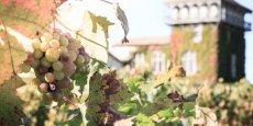 Les deux dernières destinations du projet 6 Routes du vin de Bordeaux ont obtenu la labellisation Vignobles et Découvertes.